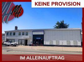 Mainz-Kastel Halle, Mainz-Kastel Hallenfläche